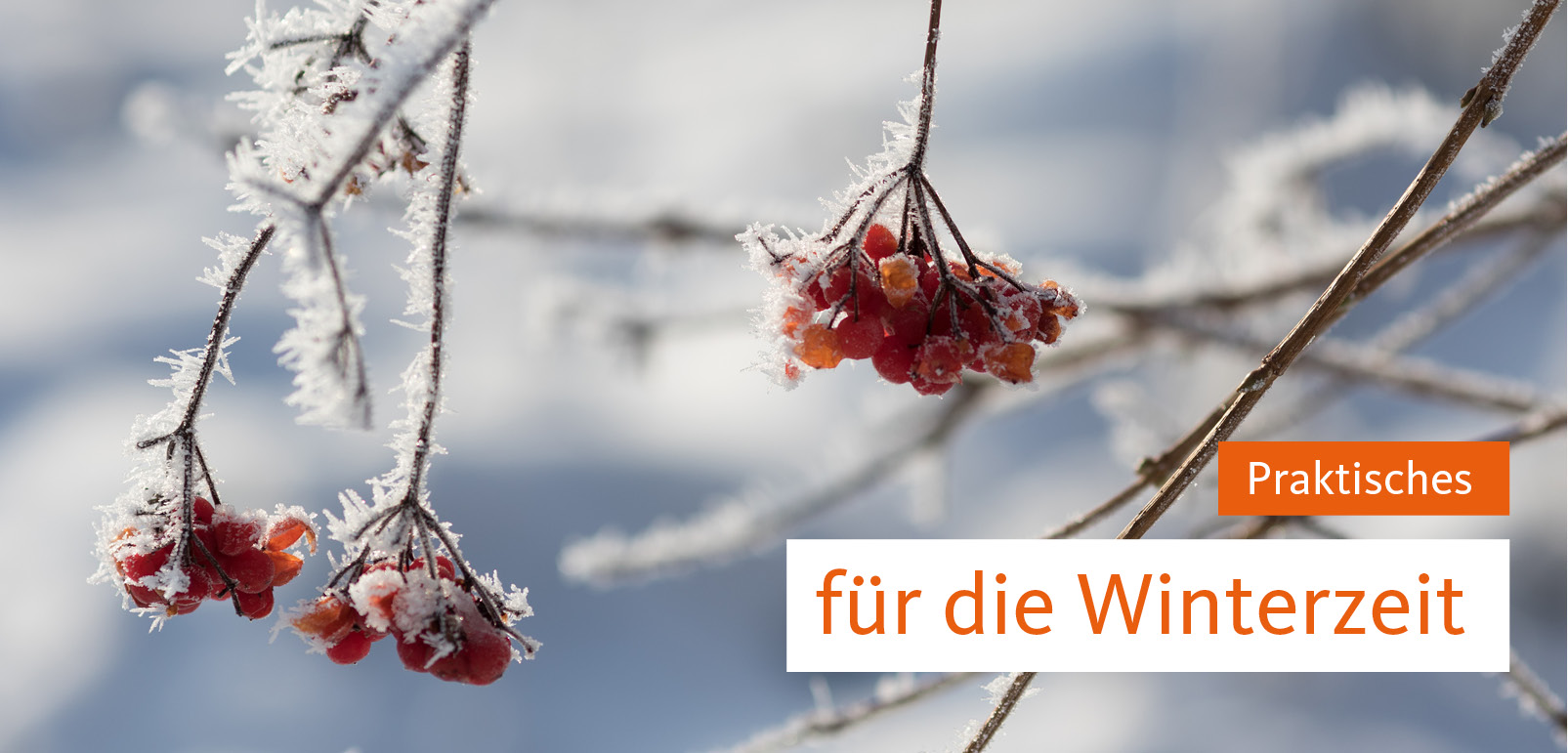 Werbemittel Winter